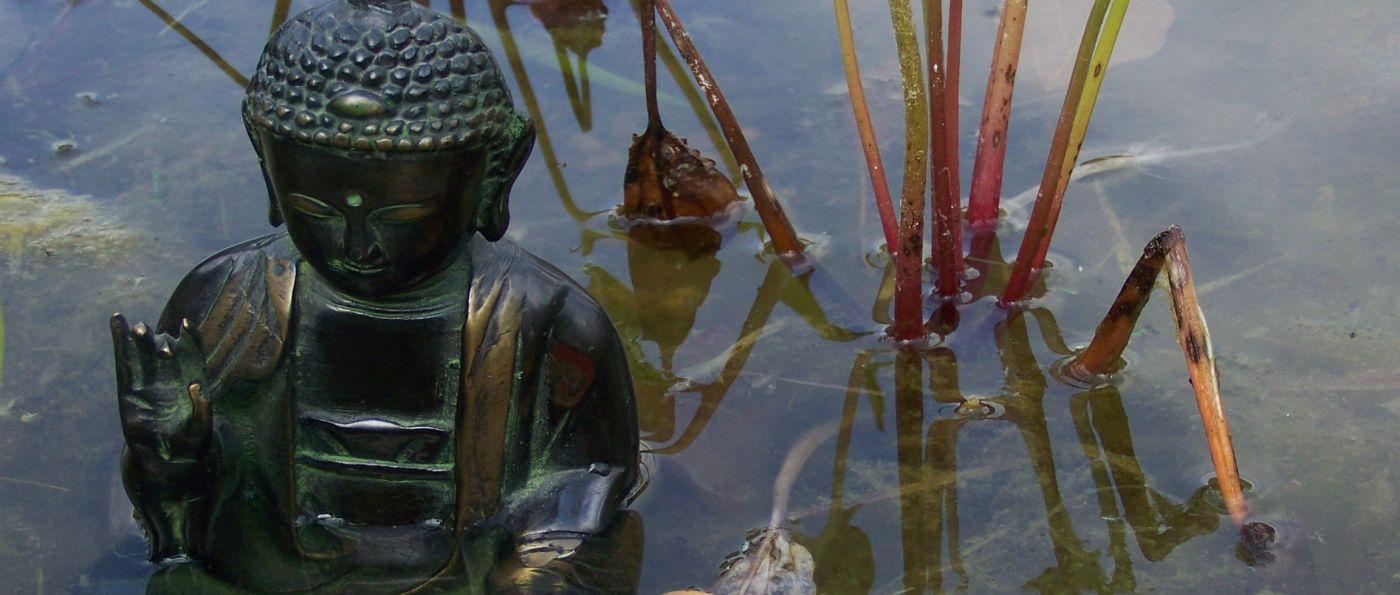 tcm-figur-buddha-im-wasser-breitbild-1400